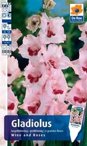 Гладиолус Крупноцветковый Вайн Энд Роузес (7шт)