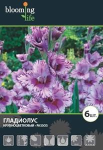 Гладиолус Крупноцветковый Пассос (7шт)
