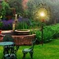 Для растений шпалера Птичка - фото 13802
