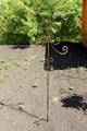 Шпалера декоративная - фото 14713