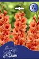 Гладиолус Крупноцветковый Джессика (7шт) - фото 42769