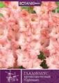 Гладиолус Крупноцветковый Кошмар (10шт) - фото 42774
